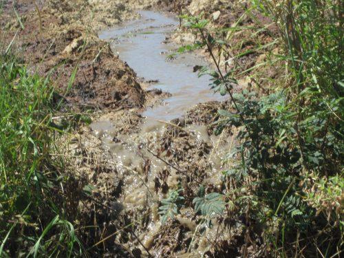 Expertise pollution eau