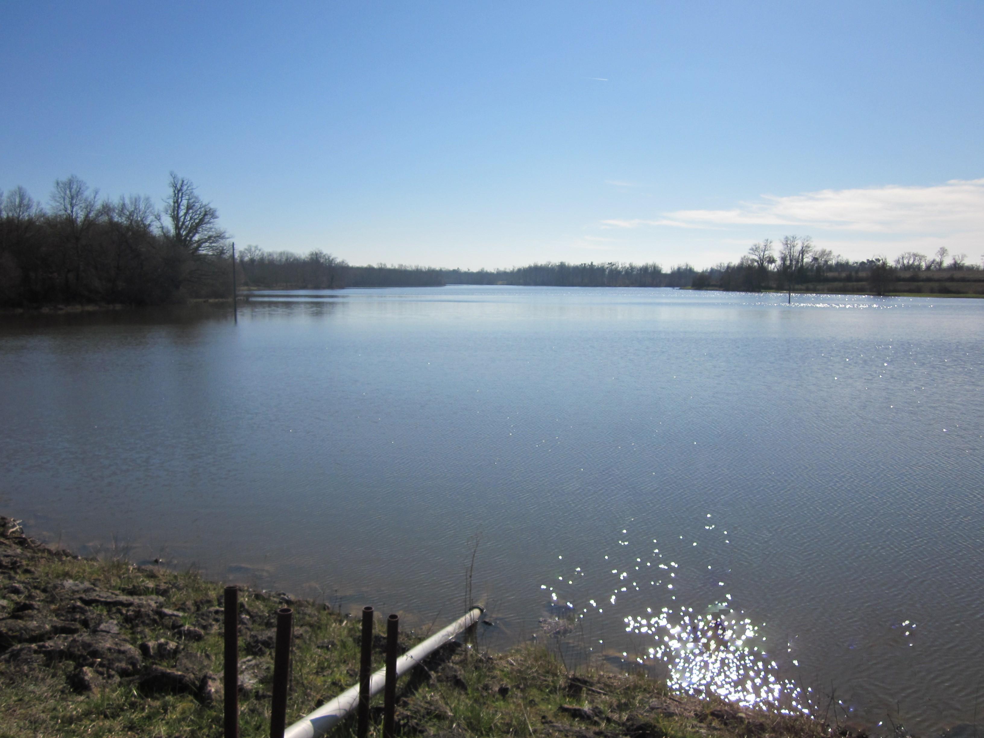expertise fuites sur lac